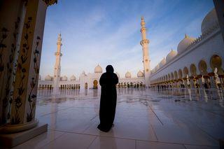 Мечеть шейха Зайда (араб. مسجد الشيخ زايد) - одна из шести самых больших мечетей в мире