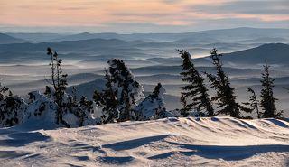 02 Пихты и кедры в этот раз скинули на время свои традиционные снежные шубы, ...