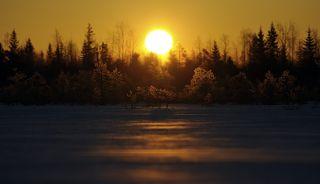Восход на болоте.