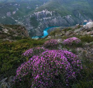 Сулакский каньон. Дагестан.