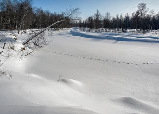 02 Мороз и солнце. Февраль 2012, -25С