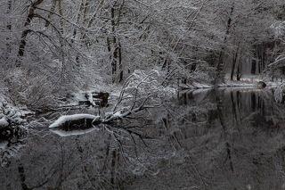 3. Природа нарядила это место почти зимними узорами.