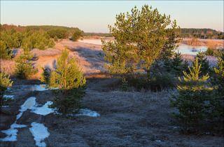 Восход на берегах Медведицы