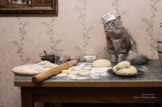 - Ну, и кому тут мои вареники не по вкусу?