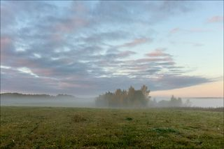 На полях перед восходом. Начало октября.