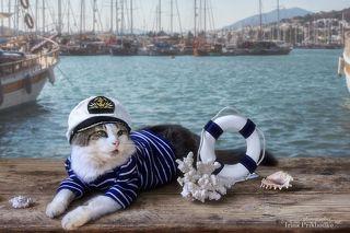 Капитан спасатель