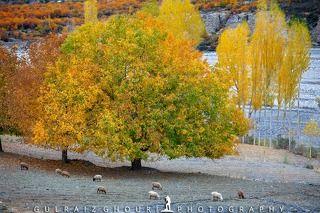 Autumn Season of Skardu