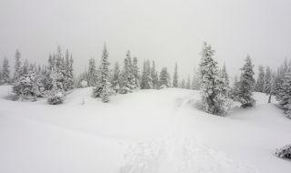 02 Снег и высокая влажность принарядили пихты на вершине горы Зелёной, а ветер разогнал любителей селфи, коих здесь стало немало