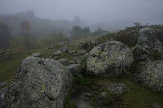 Загадочный сад камней, на заднем плане туман скрывает горы