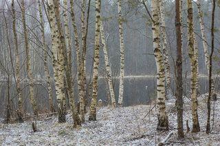 01 Пошел легкий снежок