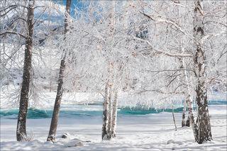 Бирюзовые воды Катуни. Зима 2020.