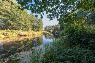 03 Несмотря на отсуствие дождей, река берущая начало в болотах, оказалась полноводной.