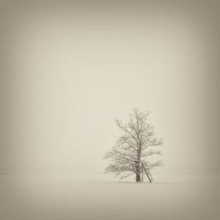 Падает, падает, падает, падает снег