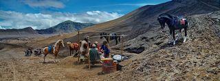 У подножия вулкана Бромо