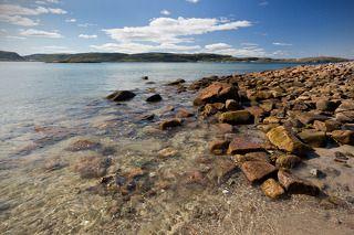 ... стоишь на берегу и чувствуешь соленый запах ветра, что веет с моря, и веришь, что свободен ты, и жизнь лишь началась.\