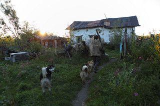 Саня по прозвищу Борода живет один в старом со времен СССР доме на рыбацком участке под названием \