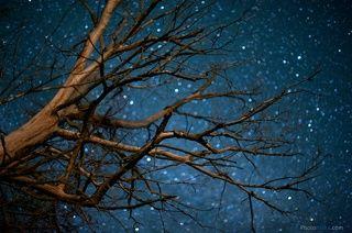 Под звездами