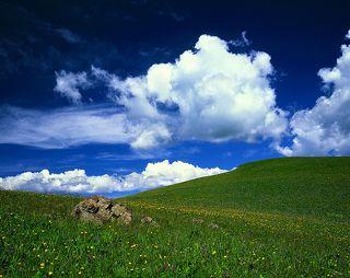 №2. Один из бесчисленных холмов урочища Табан-Карагай (Казахстан).