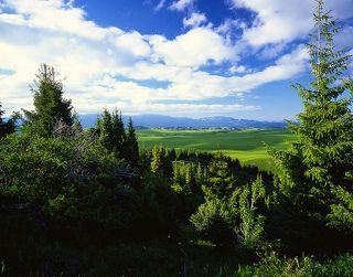 №3. Тоже Табан-Карагай, вид на альпийские луга с возвышенности.