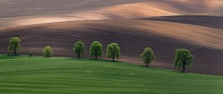 South Moravia (Czech Republic) The photographs were of 9 vertical images