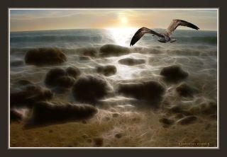 Поэма о море.
