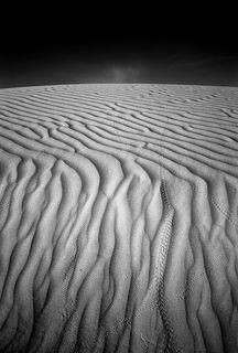 №2. Утром на песке читаются целые истории - кто кому дорогу перешел, кого догнали и съели, кому... В общем \