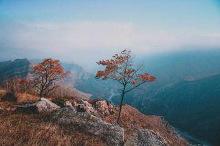 Осень в горах.Россия, Дагестан