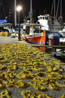 На переднем плане рыбацкая сеть