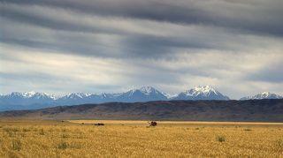 мы посетили южный Казахстан, проехав до Туркестана