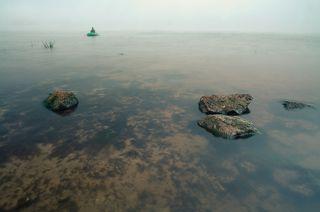 август. рыбак