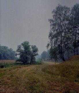 Пейзаж (жара, лето, 2010).
