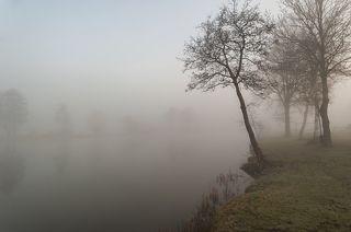 Туманное утро в Голландии