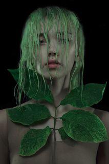 Коллажи сделаны вручную с использованием живых растений.