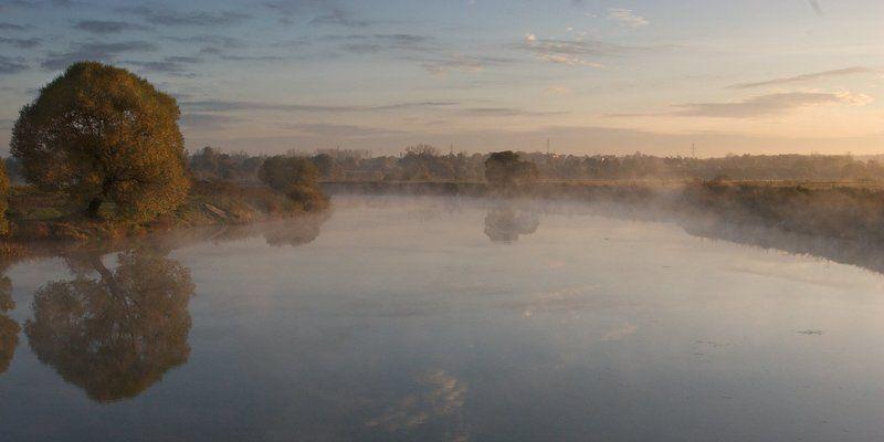 утро, рассвет, пейзаж, река, дерево Утроphoto preview