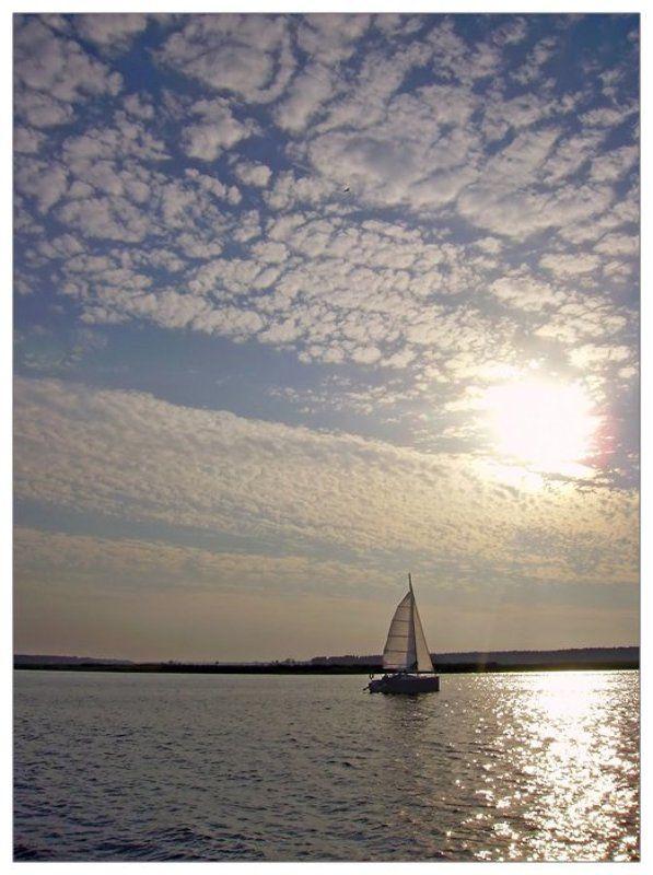 яхта, река, парус белеет парус одинокий...photo preview