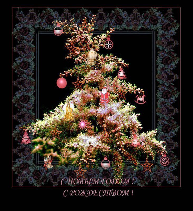 Новый, год, спирея. цветущая Елочка садовая... Летняяphoto preview