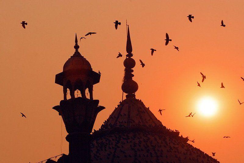 Jami Mosque, Old Delhi, мечеть, Дели, Jami Mosque, Old Delhiphoto preview