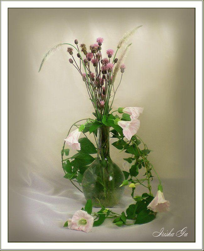 натюрморт, вьюн, цветы с вьюномphoto preview