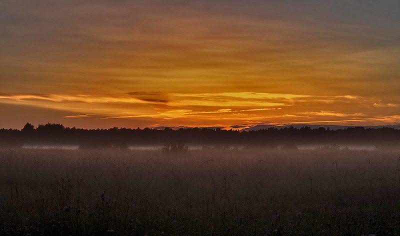 закат, деревня, лес, поле, туман photo preview