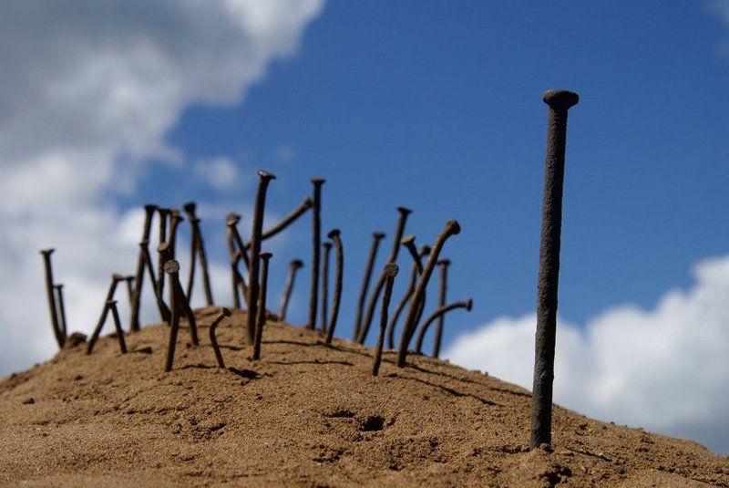 40 лет по пустыне...photo preview