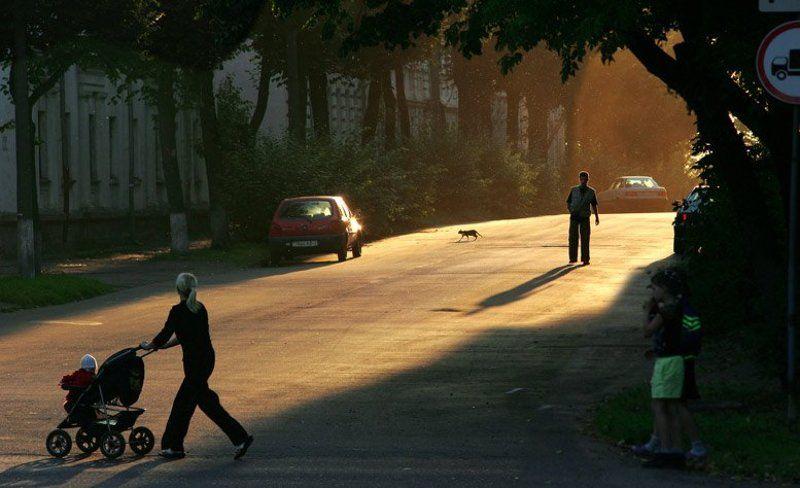 улица,вечер ВИТЕБСК.ВЕЧЕРphoto preview