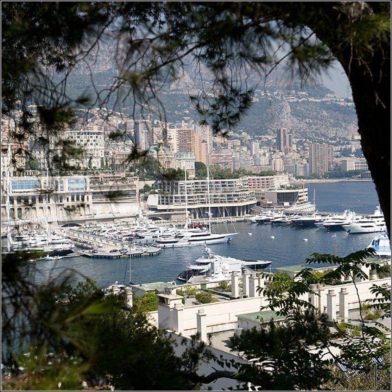 монако Монако. Серия квадрат.photo preview