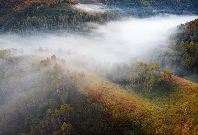 mountains, apuseni, romania, sunrise, landscape, nature, travel, autumn, trees, fog Misty Riverphoto preview