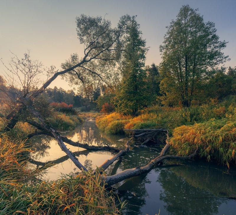 Осенняя ... фото превью