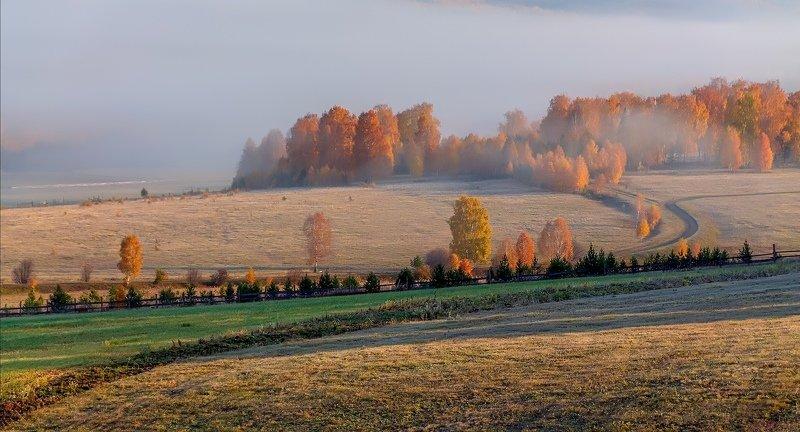 утро, рассвет, восход, туман, лучи Осеннее настроениеphoto preview