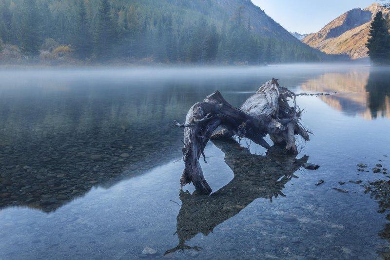 алтай, озеро, горы, лес, природа, закат, рассвет, красота, приключения, путешествие Утро туманноеphoto preview