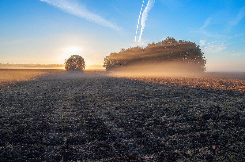 утро, рассвет, поле, осень ***photo preview