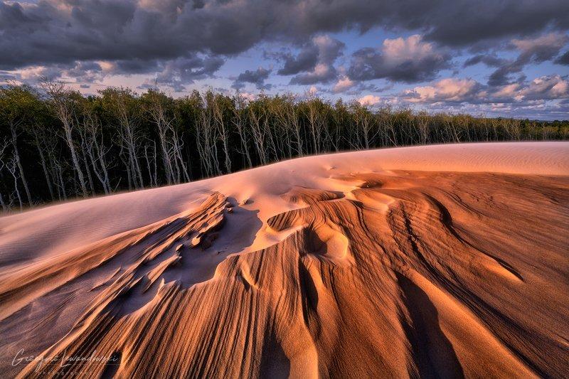 Slowinski National Parkphoto preview