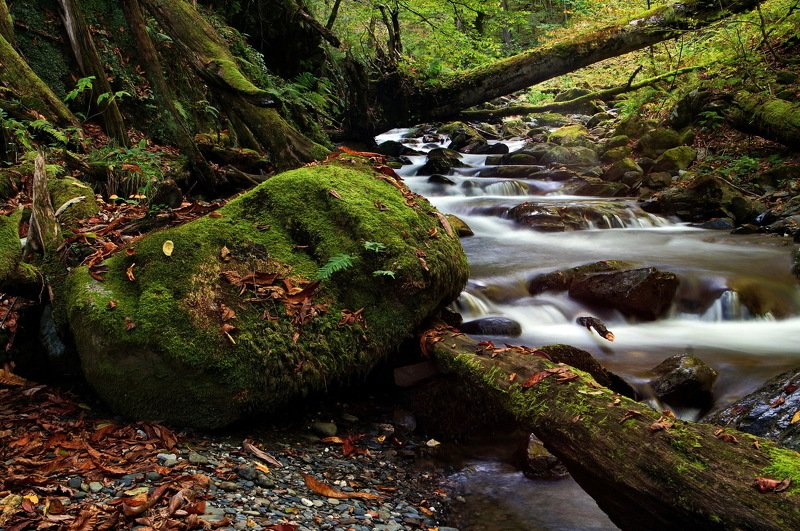 горы река осень Верховьяphoto preview