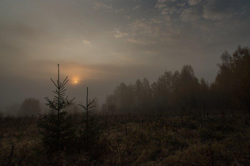 Утро туманное...photo preview